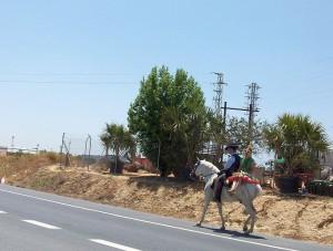 Wallfahrer Pferd El Rocio